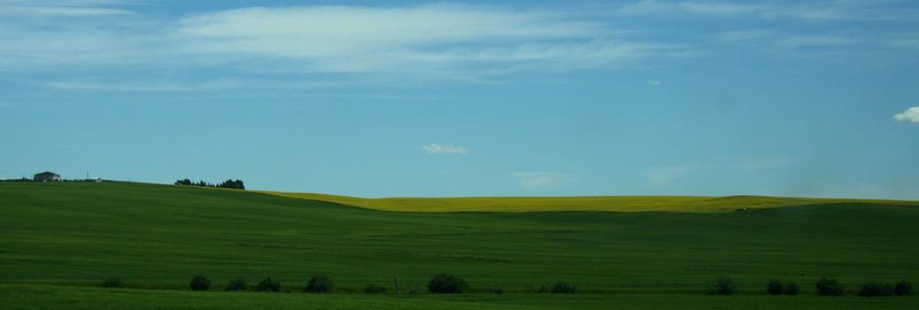 prairie-landscape21050x350